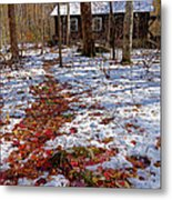 Red Leaves On Snow - Cabin In The Woods Metal Print