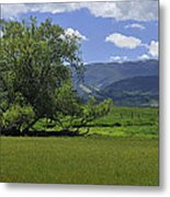 Red Lodge Spring Scene Panorama 3 Metal Print by Roger Snyder