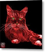 Red Maine Coon Cat - 3926 - Bb Metal Print