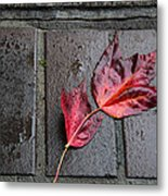 Red Maple Bricks Metal Print