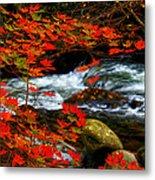 Red Maple Stream  Metal Print