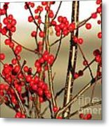 Red On Gold Metal Print