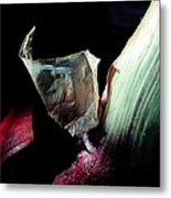 Red Onion In The Dark Metal Print