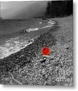 Red Pail Metal Print