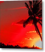 Red Palm Metal Print