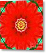 Red Pedal Star Metal Print