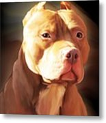 Red Pit Bull By Spano Metal Print by Michael Spano