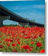 Red Poppy Field Near Highway Road Metal Print