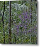 Red River Gorge Spring  Metal Print