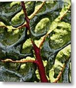 Red River Through Green Hills Metal Print
