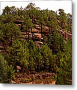 Red Rock Green Forest No3 Metal Print