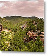 Red Rock Green Forest No2 Metal Print