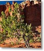 Red Rocks And Tree 1 Metal Print