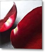 Red Rose Flower Petals Abstract II - Closeup Flower Photograph Metal Print