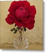 red rose III Metal Print