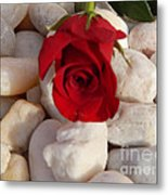 Red Rose On River Rocks Metal Print