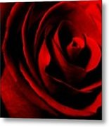 Red Rose Petals Metal Print