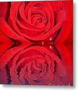 Red Rose Reflects Metal Print