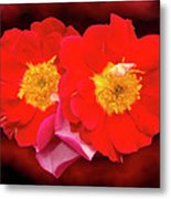 Red Roses Heart Metal Print