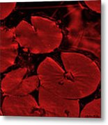Red Ruby Tuesday Metal Print