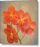 Red Scarlet Orchid On Grunge Metal Print by Rudy Umans