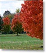 Red Trees 2 Metal Print