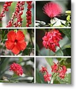 Red Tropicals Collage Metal Print
