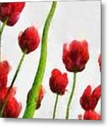 Red Tulips From The Bottom Up Triptych Metal Print