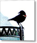 Red Wing Posed Metal Print