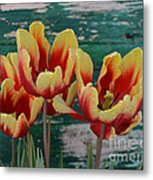 Red Yellow Tulips Metal Print
