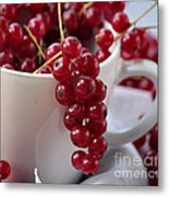 Redcurrant Close Up Metal Print