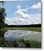 Redtail Lake At Steigerwald Natinal Wildlife Refuge Metal Print by Lizbeth Bostrom