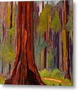 Redwood Giant Metal Print