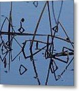 Reed Reflection Metal Print