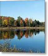 Reflected Color Metal Print