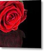 Reflected Red Rose Metal Print