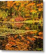 Reflecting Colors Metal Print