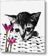 Reflecting Kitten Metal Print