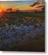 Reflecting On A Duba Plains Sunset Metal Print