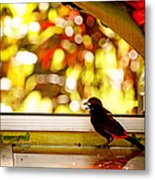 Reflecting On Beauty Metal Print
