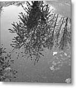 Reflection 002 Metal Print