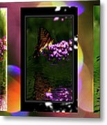 Reflection Above The Pond Metal Print