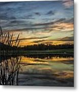 Reflection At Sunset With Cattails Metal Print