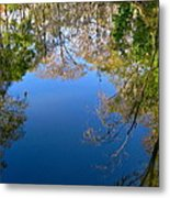 Reflection Metal Print by Denise Mazzocco