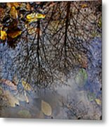 Reflection In A Puddle Metal Print