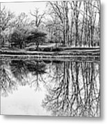 Reflection In Black And White Metal Print