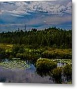 Reflection In The Swamp Metal Print