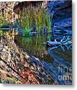 Reflection In The Water Metal Print