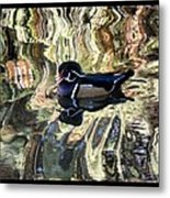 Reflection Of A Wood Duck Metal Print