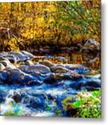 Reflection Of Autumns Natural Beauty Metal Print